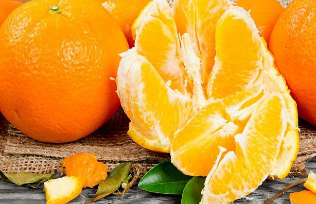 What food has the most Vitamin C