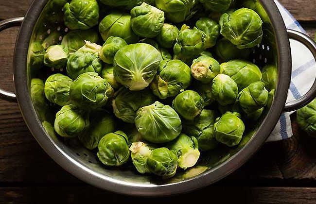 Brussel Sprouts Weight Loss