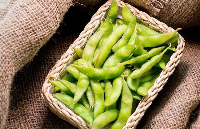Is Edamame Good for Weight Loss