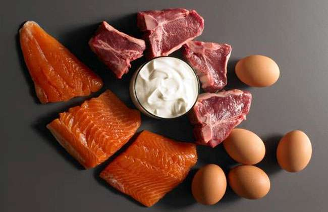 Protein Foods To Lose Weight Fast