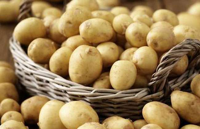 The Potato Diet Plan