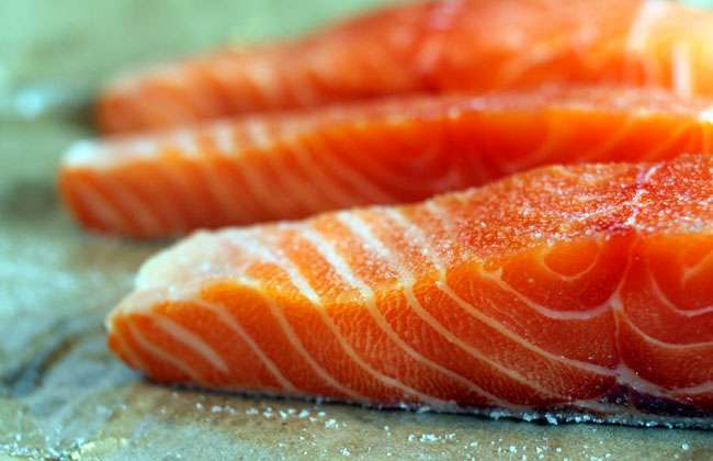 Salmon and Weight Loss