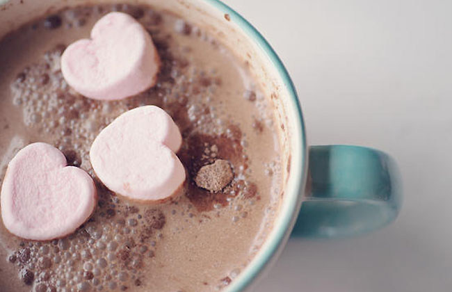 Best Cocoa For Hot Chocolate
