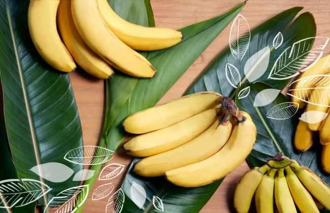 Bananas boost your health