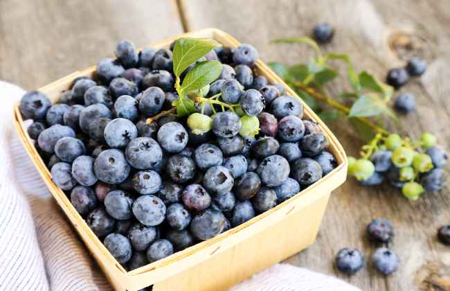 Blueberries boost your health